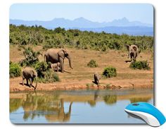 Mouse Mat Great office accessories computer desk accessory best mouse pad Computer Mouse Photo mouse pad picture African Elephant - Beauty gifts for Home decor or Office decor adds charm to your home office or workplace. p#102  relaxing and special image: Mountain landscape Sand and trees. Elephants by the Lake of water. Pure and fully natural beauty.  Beautiful Mousepads are rectangle shaped stylish omfortable mouse pads