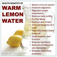 health benefits of Warm Lemon Water – Health and Wellness Warm Lemon Water Benefits, Drinking Warm Lemon Water, Fruit Benefits, Benefit Of Lemon Water, Warm Water With Lemon, Lemon Health Benefits, Natural Food, Salud Natural, Natural Herbs