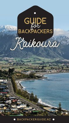 Have a whale of a time in Kaikoura!  The adventure in Kaikoura extends from the Inland and Seaward Kaikoura mountain ranges all the way out into the Pacific Ocean. One day, you could be hiking on top of the beautiful Mt Fyffe, overlooking the town and the peninsula. The next day, you could be out at sea swimming with dusky dolphins in their natural habitat. Kaikoura really is one of those unique places!