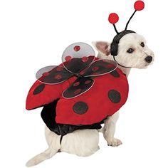 Ladybug with Wings Dog Costume LARGE >>> For more information, visit image link.