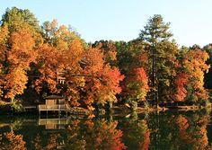 """Foliage at Blue Lake, near Birmingham, Ala."" (From: 55 Incredibly Beautiful Photos of Fall)"