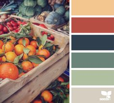 Explore Design Seeds color palettes by collection. Colour Pallette, Color Palate, Colour Schemes, Color Combos, Color Patterns, Autumn Color Palette, Paint Color Palettes, Design Seeds, Color Concept