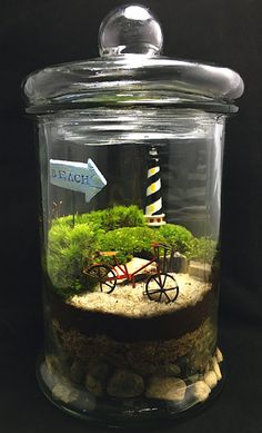 Beach Terrarium-Bike Terrarium-Moss Terrarium-Large Terrarium-TerraSphere - Mini garden - how fun! Indoor Garden, Indoor Plants, Outdoor Gardens, Terrarium Diy, Terrarium Wedding, Ideas Florero, Little Gardens, Moss Garden, Terraria