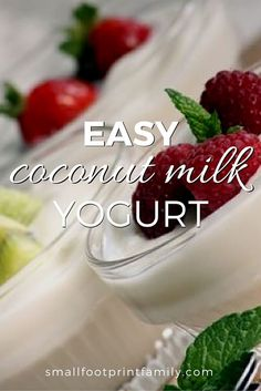 Coconut milk yogurt is a great choice for people allergic to or avoiding yogurt made from cow's milk or soy. And it costs a LOT less than store-bought, without the additives. Click to learn how to make coconut milk yogurt at home!    #paleo #paleodiet #glutenfree #dairyfree #vegan #vegetarian #coconut #grainfree #realfood