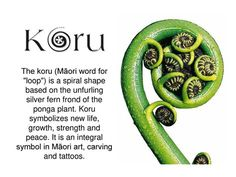 Maori tattoos – Tattoos And Koru Tattoo, Thai Tattoo, Maori Words, Maori Patterns, Spiral Tattoos, Silver Fern, Tatoo, Ideas, Lifebuoy