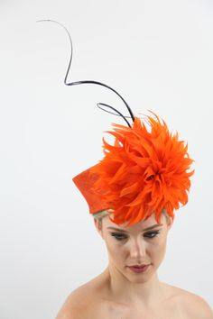 Create stunning Feather Flowers under the guidance of your international tutor Carole Maher. Head Coverings, Star Awards, Hair Ornaments, Fascinators, Headgear, Head Wraps, Feathers, Headbands, Scarves
