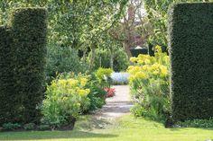 Garden path in June