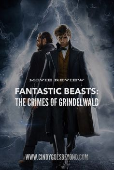 Fantastic Beasts: The Crimes of Grindelwald - Cindy Goes Beyond Fantastic Beasts Movie, Fantastic Beasts And Where, Dr Who, Rowling Harry Potter, Crimes Of Grindelwald, Harry Potter World, Boys Who, Illustrations Posters, Nerd