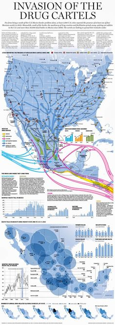 Invasion of the Drug Cartels - by Richard Johnson