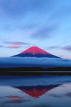 There are many beautiful places to visit in Japan all year round. The difficulty is choosing which place you want to go to the most. Place in japan, secret places in japan Monte Fuji, Beautiful World, Beautiful Places, Beautiful Pictures, Fuji Mountain, Japon Tokyo, Affinity Photo, Shizuoka, Japan Travel