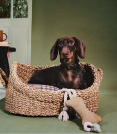 There are various dog beds on offer, from the natural wicker basket to the patterned soft cushioned options in both striped and floral styles.