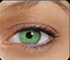 b73a735c41b Buy Branded Contact Lenses Online