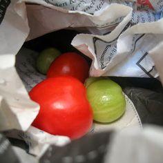 smørbrød_syltetøy: tomaten nachreifen lassen