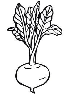 13 Best Vegetable Patterns Images On Pinterest