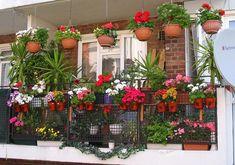 Porch and balcony, balcony planters, balcony flowers, small balcony garden, balcony gardening Balcony Grill, Small Balcony Garden, Balcony Flowers, Balcony Plants, Garden Pots, Balcony Ideas, Balcony Gardening, Outdoor Balcony, Apartment Gardening