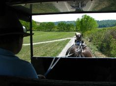 Yoder's Amish Home: Our Driver and Sadie