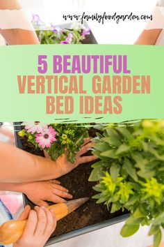Vertical gardening beds make a wonderful use of space, add appealing architecture to your garden, and creates a fun edible space when you grow food on them. Sharing these beautiful vertical garden bed ideas you might want to try today! #garden #gardeningtips #verticalgardening #verticalgardenbeds Healthy Fruits And Vegetables, Organic Vegetables, Container Gardening, Gardening Tips, Indoor Gardening, Vegetable Gardening, Garden Spaces, Garden Beds, Grow Food
