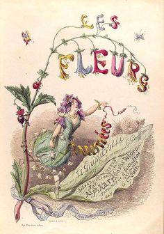 Jean Ignace Isidore Gérard/J.J. Grandville (1803-1847) Vintage Botanical Illustration
