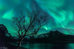 Stunning blue/green #auroraborealis #NorthernLights by Harald Albrigtsen on October 9 at Tromso, Norway.