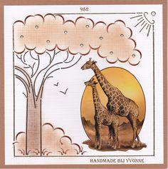 YBB 982 Giraffe`s D&D 105