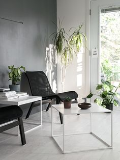 my unfinished home living room grey wall green plants diy plywood floor
