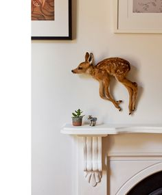 bambi taxidermy- this has been pinned 'cause it freaks me out!