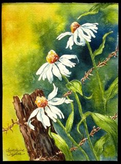 Daisies Outside My Door, watercolor by Sunshine Taylor