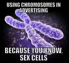 I love science and nerd humor! Nerd Jokes, Nerd Humor, Geek Humour, Lab Humor, Corny Jokes, Thomas Hunt Morgan, Chromosome X, Chromosomal Disorders, Haha