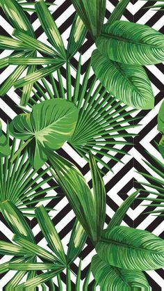 Telefon Wallpaper – Sommer – Elçin🌻 – -… – Best Garden Plants And Planting Cute Backgrounds, Phone Backgrounds, Cute Wallpapers, Wallpaper Backgrounds, Iphone Wallpaper, Interesting Wallpapers, Plant Wallpaper, Tropical Wallpaper, Screen Wallpaper