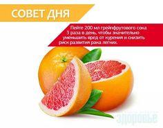 Grapefrut