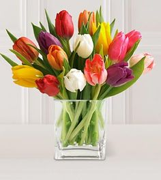flowers+in+a+vase+pictures | you ll need flowers vase 3 cool water using aspirin fill the vase ...