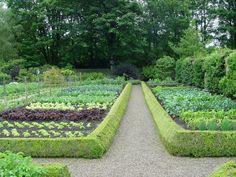 tidy boxwood edged garden