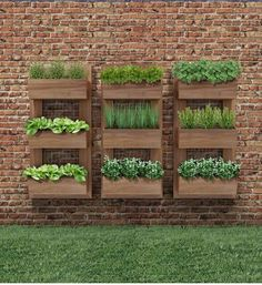 Vertical Gardens - Once you've designed your garden, pick the plants that you want to grow during each season. There's no better solution than to bring a vertical garden. While arranging a vertical garden… Vertical Herb Gardens, Vertical Garden Diy, Outdoor Gardens, Vertical Planter, Herb Planters, Wall Herb Gardens, Planters On Fence, Wall Mounted Planters Outdoor, Wood Gardens