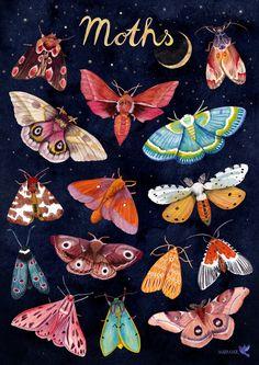 Moth Drawing, Painting & Drawing, Painting Inspiration, Art Inspo, Tattoo Papillon, Posca Art, Insect Art, Guache, Aesthetic Art