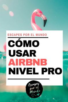▷ Cómo usar AIRBNB como un PROFESIONAL en 10 pasos - AIRBNB an excellent platform to get accommodation around the world at the best price, do you already know it? dare to take full advantage of it. Travel Goals, Travel Advice, Travel Tips, Travel Hacks, Time Travel, Places To Travel, Travel Destinations, Travelling Tips, Traveling