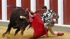 Enrique Ponce se dobla con torería en la Goyesca de Valladolid