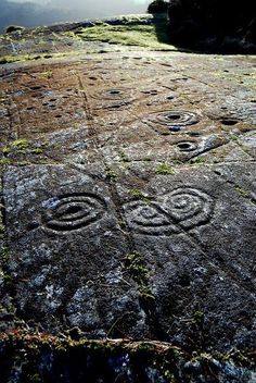 Achnabreck, a horned spiral, Cairnbaan, Scotland. The largest expanse of rock art in Great Britain, with rings, cups, and gutters, as well as some curious motifs like this horned spiral.: