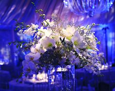 Love the blue and purple lighting and crystals
