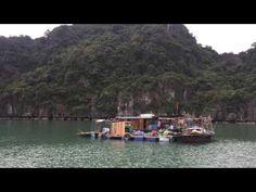 LA BAIE HALONG AU VIETNAM - PATRIMOINE MONDIAL LOIN DE LA FOULE VOIR LA VIDEO:https://www.youtube.com/watch?v=Zy8_2_dHdyM&feature=youtu.be Voyage sur mesure au Vietnam/ Voyage au Vietnam avec Voyagesviet Travel - guide independant Agence de voyage locale au Vietnam Son site :http://voyage-vietnam.com/ ou http://www.voyagesviet.com/