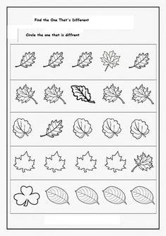 Crafts,Actvities and Worksheets for Preschool,Toddler and Kindergarten.Lots of worksheets and coloring pages. Fall Preschool, Preschool Education, Kindergarten Worksheets, Preschool Activities, Dna Worksheet, Fall Crafts, Crafts For Kids, Kindergarten Science, Kindergarten Homework