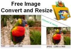 Free Image Convert and Resize is a compact yet powerful program for batch mode image processing. The program easily converts separate images as well as file folders containing images into different graphic formats, renames, reorders them and changes their size in accordance with the set parameters.