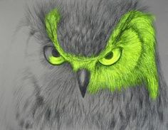 Wild eyes Stretched Canvas by LOUISE MCNAUGHT | Society6