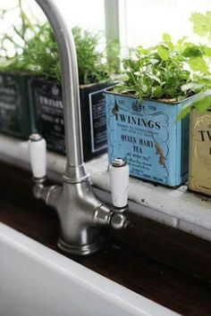 Recyclez vos boîtes à thé : transformez les en pot pour faire pousser vos herbes aromatiques #design #kitchen #teabox