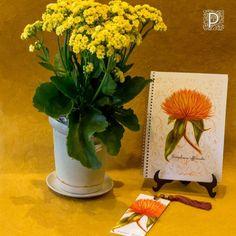 Vaso de cerâmica, Caderno e marcador de livros.