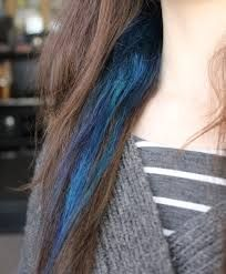 Image result for blue hair streaks in brown hair