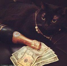 Just_Infooh — LuxuryLifestyle BillionaireLifesyle Millionaire...