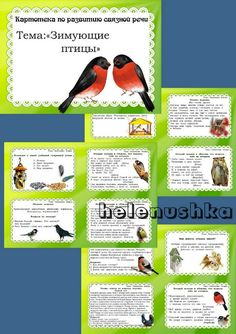 Картинки формата a4 с зимующими птицами