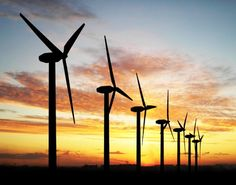 Painting #WindTurbines Black Could Prevent Thousands of Bird Deaths Every Year.  #WindEnergy #Environment