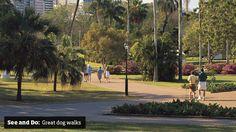 Must do dog walks SEQ
