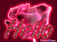 Animated Sparkles | ... scrap on orkut scraps book image animated hello glitter rose msg hello